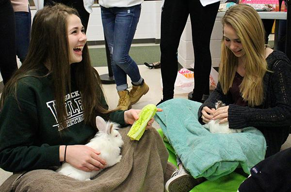Freshmen Sophie Ward and Beibhinn O'reilly, like many other students on Tuesday morning, interact with bunnies brought to PV by Tevaland.