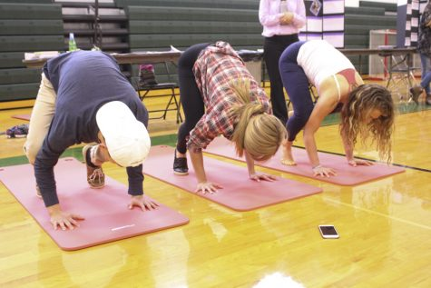 PV hosts its first Wellness Fair