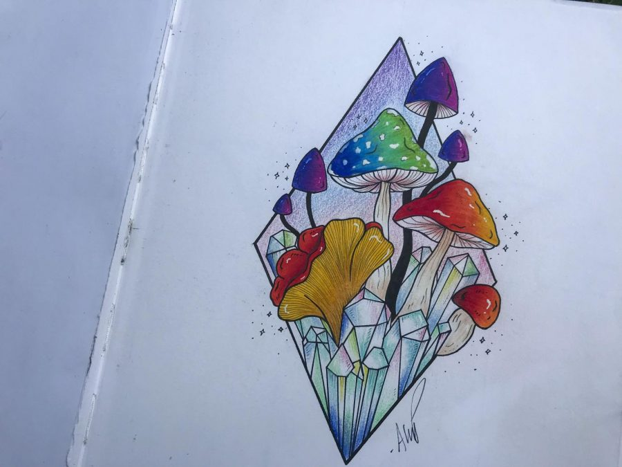 One+of+Pareti%27s+drawings+involving+nature+and+the+environment.+