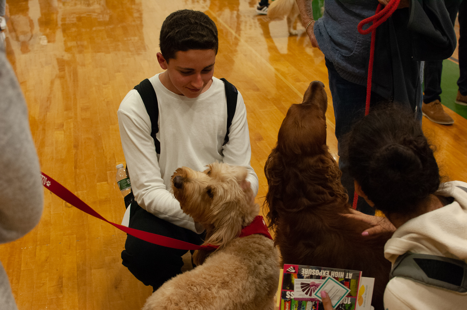 Sophomores Ben Carter and Erin Vollers petting therapy dogs at the May 2019 wellness convention
