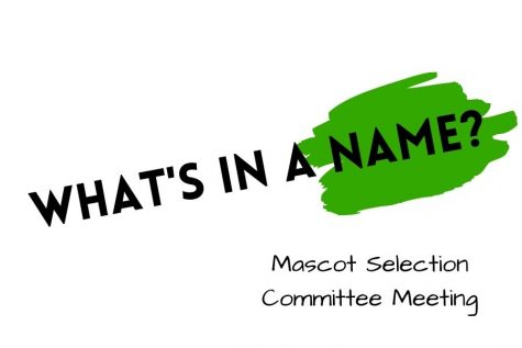PV Mascot Selection Committee student representative Vasili Karalewich said that the committee was able to compile 53 mascot suggestions after holding its second meeting Thursday afternoon in PV's auditorium and through Zoom. The committee cannot reveal any suggested mascot names at this time.