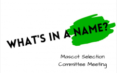 The final three mascot options– Panthers, Green Wave, and Hawks – were presented to the Board of Education at its meeting Monday night. Pascack Valley students and faculty will be given the opportunity to vote for the mascot on Thursday, Feb. 24.