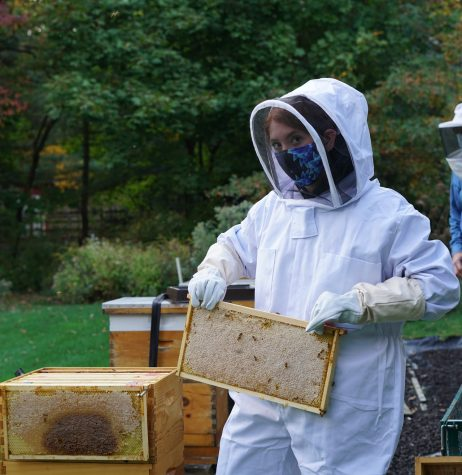 Junior Faith Macchione first learned about the importance of beekeeping during a Girl Scouts project. She has gone on to help start the Beekeeping Club at Pascack Valley and create a Gold award around the premise of beekeeping.