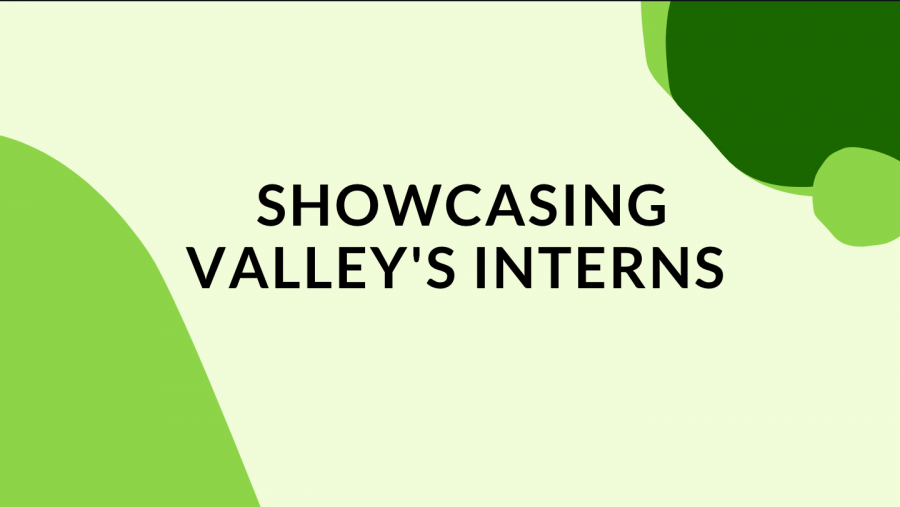 With the 2020-21 school year coming to a close, The PV Student Publication wanted to highlight Pascack Valley interns who have continued to intern during the pandemic.