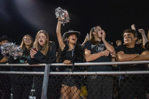 The PV stands going wild after a touchdown